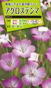 花種  NL200 アグロステンマ ギタゴ 小袋 [FZZ437]【花の種】【タキイのタネ】【送料110円〜】【ガーデニング】