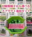 12種類のタネから選べる スプラウト栽培セット【健康野菜】【スプラウト】