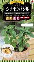 ハーブ種子 小袋  シナモンバジル (約110粒) 【送料110円〜】【タキイのタネ】【ハーブの種】