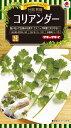 ハーブ種子 小袋 コリアンダー(パクチー、香菜)(約80粒)【送料110円〜】【タキイのタネ】【ハーブの種】