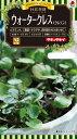 ハーブ種子 小袋 ウォタークレス(クレソン)(約1060粒)【送料110円�】【タキイのタネ】【ハーブの種】