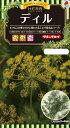 ハーブ種子 小袋 ディル(イノンド)3ml【送料110円〜】【タキイのタネ】【ハーブの種】