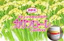 【郵便送料無料】トキタ カリフローレ80 1000粒 スティックカリフラワー種子 【野菜種子】