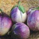 ナス種子 ロッサビアンコ 0.2ml  なす種子 【ナス種】【野菜の種】イタリアナス