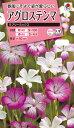 花タネ NL300 アグロステンマ ラブリーミックス 小袋 [FZZ434]【花の種】【タキイのタネ】【送料110円〜】【ガーデニング】