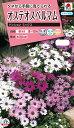 花タネ NL300 オステオスペルマム パッションミックス 小袋 [FOM110] 【花の種】【タキイのタネ】【郵便送料110円〜】【ガーデニング】