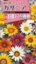 花タネ NL300 ガザニア タレント ミックス 小袋 [FGZ120]【花の種】【タキイのタネ】【郵便送料110円〜】【ガーデニング】