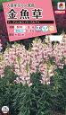 花タネ NL300 金魚草 F1 プリンセス パープルアイ 小袋 [FKG661]【花の種】【タキイのタネ】【郵便送料110円〜】【ガーデニング】