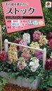 花タネ NL300 ストック シンデレラミックス 小袋 [FSTA00]【花の種】【タキイのタネ】【郵便送料110円〜】【ガーデニング】