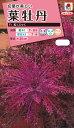 花タネ  NL300 葉牡丹 F1 紅くじゃく 小袋 [FHB621]【花の種】【タキイのタネ】【郵便送料110円〜】【ガーデニング】
