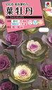 花タネ NL300 葉牡丹 F1 ファインミックス 小袋 FHB650 【花の種】【タキイのタネ】【郵便送料110円〜】【ガーデニング】