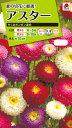 花種 NL200 アスター ちくまポンポン混合 小袋 FAS129 【花の種】【タキイのタネ】【送料110円〜】【ガーデニング】