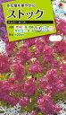 花種 NL200 ストック キスミー ローズ 小袋 [FST721]【花の種】【タキイのタネ】【送料110円〜】【ガーデニング】