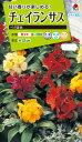 花種  NL200 チェイランサス ベガ混合 小袋 [FZZ729]【花の種】【タキイのタネ】【送料110円〜】【ガーデニング】
