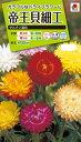 花種 NL200 帝王貝細工 サルタン混合 小袋 FTK139 【花の種】【タキイのタネ】【送料110円〜】【ガーデニング】