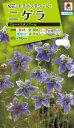 花種  NL200 ニゲラ ブルーイスタンブール 小袋 [FZZ771]【花の種】【タキイのタネ】【送料110円〜】【ガーデニング】