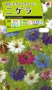 花種  NL200 ニゲラ ペルシャンジュエル 小袋 [FZZ770]【花の種】【タキイのタネ】【送料110円〜】【ガーデニング】