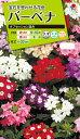 花種 NL200 バーベナ オブセッション混合 小袋 [FBB320]【花の種】【タキイのタネ】【送料110円〜】【ガーデニング】
