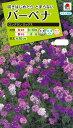 花種 NL200 バーベナ ロングラン ミックス 小袋 [FBB210]【花の種】【タキイのタネ】【送料110円〜】【ガーデニング】