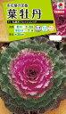 花種 NL200 葉牡丹 F1 丸葉系フレッシュレッド 小袋 [FHB521]【花の種】【タキイのタネ】【送料110円〜】【ガーデニング】