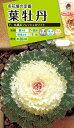 花種 NL200 葉牡丹 F1 丸葉系フレッシュホワイト 小袋 [FHB522]【花の種】【タキイのタネ】【送料110円〜】【ガーデニング】