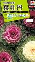 花種 NL200 葉牡丹 F1 丸葉系フレッシュミックス 小袋 [FHB530]【花の種】【タキイのタネ】【送料110円〜】【ガーデニング】
