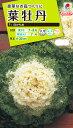 花種 NL200 葉牡丹 F1 白かもめ 小袋 [FHB572]【花の種】【タキイのタネ】【送料110円〜】【ガーデニング】