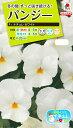 花種 NL200 パンジー F1 ナチュレ ホワイト 小袋 [FPA724]【花の種】【タキイのタネ】【送料110円〜】【ガーデニング】