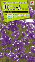 花種 NL200 リモニューム(スターチス) ディープ ブルー 小袋 [FSU211]【花の種】【タキイのタネ】【送料110円〜】【ガーデニング】