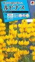 花種 NL150 ルピナス 黄花ルピナス 小袋 [FRP121]【花の種】【タキイのタネ】【送料110円〜】【ガーデニング】