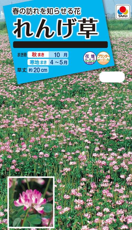花種 NL150 れんげ草 小袋 [FZZ940]【花の種】【タキイのタネ】【ガーデニング】