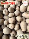 じゃがいも種子 インカのめざめ芋 10kg サイズ混合 【馬鈴薯種】【種芋】【検品合格済】