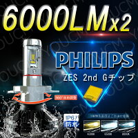 PHIPS最新LED