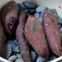 焼き芋の石 1.2〜2.5cm 20kg