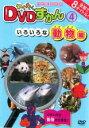 【バーゲンセール】【中古】DVD▼わくわく DVDずかん 4 いろいろな動物編▽レンタル落ち