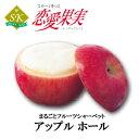 【恋愛果実】まるごとフルーツシャーベットアップル ホールサイズ