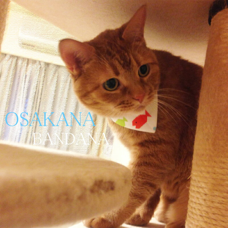 【DM便OK!!】★ハンドメイド!★オリジナル猫用おさかなバンダナ