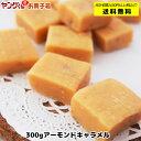 【アウトレット・訳あり】300gアーモンドキャラメル 【合計金額2,000円以上で送料無料