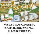 無農薬 玄米 米 10kgコシヒカリ 京都府 丹波産 JAS有機米 令和元年産 送料無料
