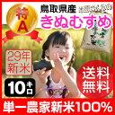 鳥取県 倉吉市大原産 きぬむすめ 特A 10kg 新米 29年産(米原さんちの お米 大山 鳥取 キ