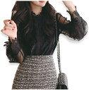ショッピングtv サフィーブラウ A53 ブラウス レディース ガールズ 女性 シャツ トップス 長袖 襟付き 立ち襟 立襟 かわいい襟 後ろ ボタン レース チュール 透け シワにならない おしゃれな ファッション 大人 ガーリー ゴシック(ブラック, L)