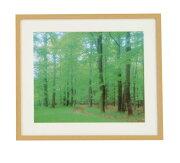 ナカバヤシ 木製写真額縁(角型)フォトフレーム 再生木材 六ツ切判 フ-SW-172-N 木地
