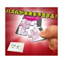 【全品ポイント増量!】 手品 マジックシリーズ フューチャーパズル M11661