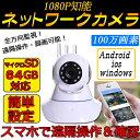 防犯カメラ ワイヤレス 屋内 ペット 小型 SD 100万画素 1080P 監視カメラ 超高画質 動...