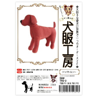 Torso Studio small dog video description and