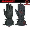 MAMMUT Expert Tour Glove Men【マムート】 グローブ 1090-02351 (P10)