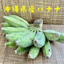 【期間限定】無農薬 沖縄県産バナナ 1kg前後