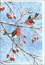 グリーティングカード 【クリスマス】 枝にとまる小鳥(CPSC0045)