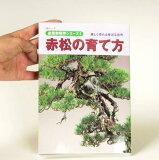图书:如何种植松树[本:赤松の育て方]