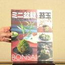 本:ミニ盆栽と苔玉